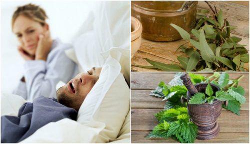 Comment préparer 5 remèdes maison pour réduire les ronflements