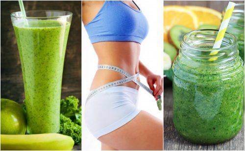 Découvrez comment préparer 5 jus verts pour perdre du poids