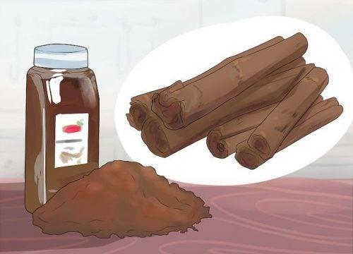 La cannelle : un effet aphrodisiaque et bien plus encore