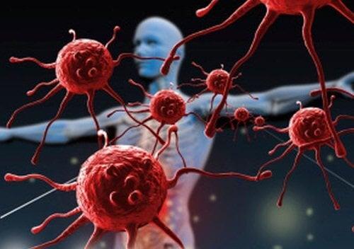 baisse du système immunitaire