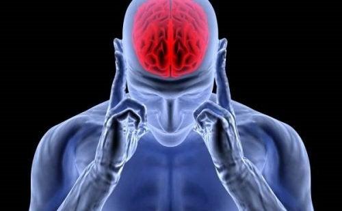 Adrénaline : l'hormone de l'activité, du stress et des maux de tête