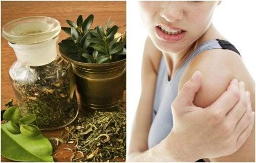 Préparer un alcool à base de plantes pour apaiser les douleurs articulaires