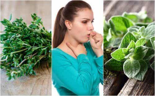5 plantes médicinales pour soulager la toux grasse