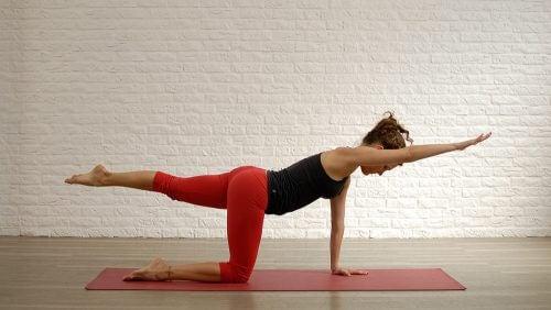 gainage latéral pour renforcer votre dos