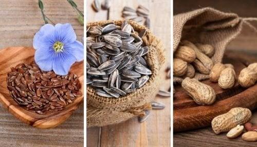 5 graines comestibles et leurs incroyables propriétés