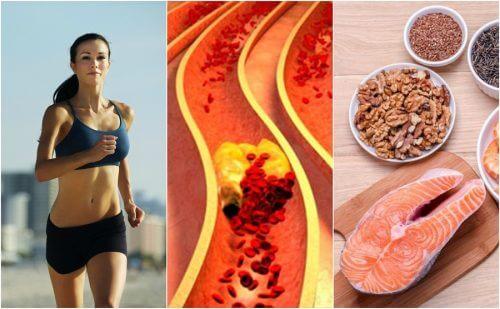 6 habitudes qui vous aideront à contrôler votre taux de cholestérol naturellement