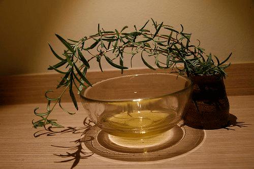 Huile essentielle d'arbre à thé pour votre beauté.