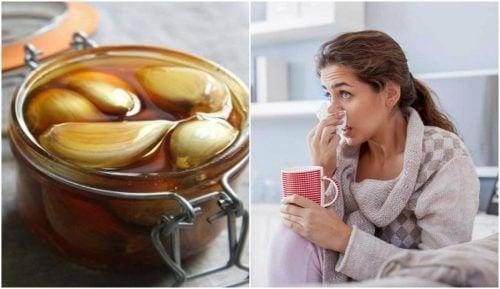 Comment améliorer votre santé respiratoire avec le miel d'ail