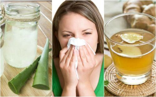 Comment calmer la rhinite allergique avec 5 remèdes d'origine naturelle