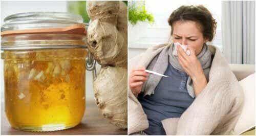 Sirop maison miel et gingembre contre le froid