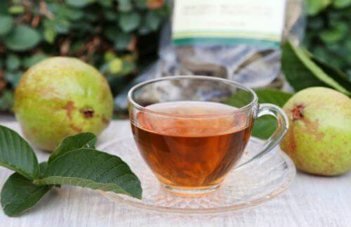 Thé aux feuilles de goyave pour réduire le sucre dans le sang