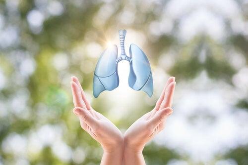 Traitement pour le cancer du poumon.