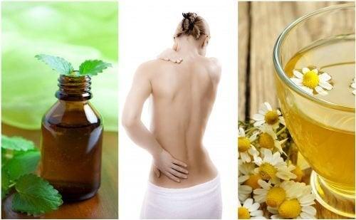 7 relaxants musculaires naturels