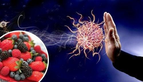 9 aliments pour booster votre système immunitaire