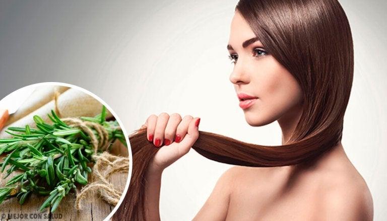 Herbes et épices qui favorisent la pousse des cheveux