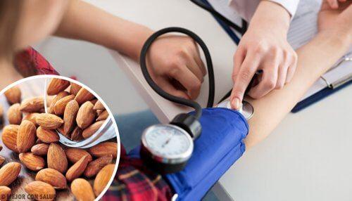 Quels aliments consommer pour traiter l'hypotension ?