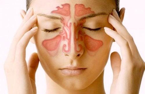 Sinus paranasaux : 5 choses que nous devrions savoir