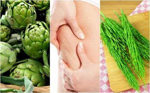 Thé à l'artichaut et la prêle des champs contre la cellulite