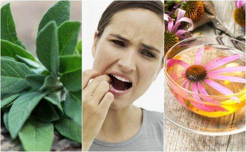 Comment combattre la gingivite avec 5 remèdes naturels