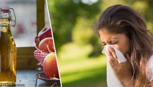 Vous avez des allergies ? Dites-leur au revoir avec ces 4 remèdes maison
