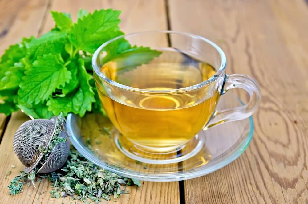 Remèdes naturels efficaces pour soigner les maux de tête : mélisse