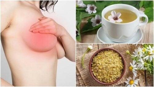 5 remèdes d'origine naturelle pour calmer les douleurs dans les seins