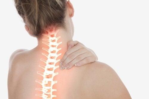 renforcer votre colonne vertébrale