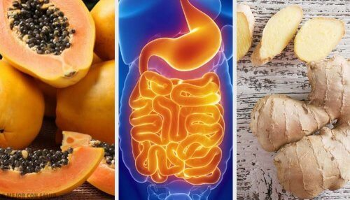 Fruits et plantes pour soulager les complications digestives
