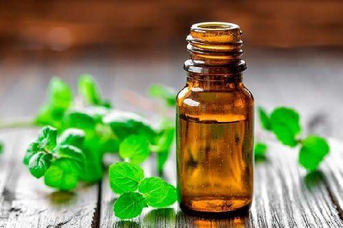 douleurs musculaires : huile de menthe