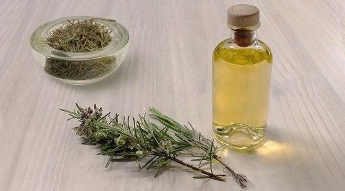 Les usages peu connus de l'huile de romarin