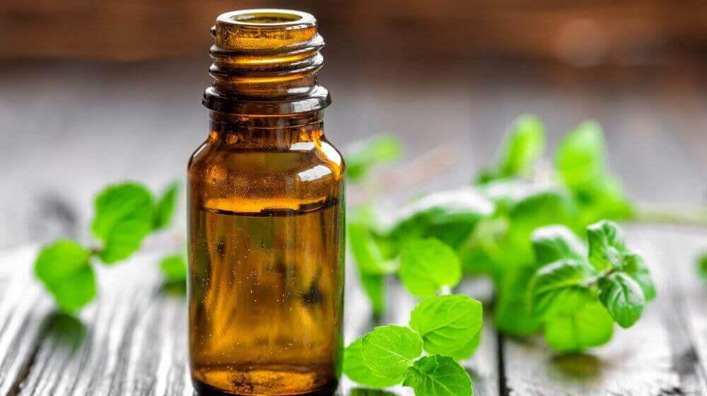 huile essentielle de menthe pour perdre du poids