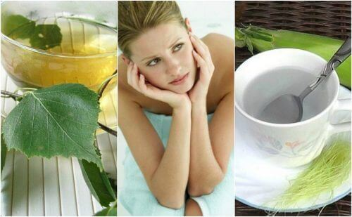 5 infusions naturelles contre la cystite