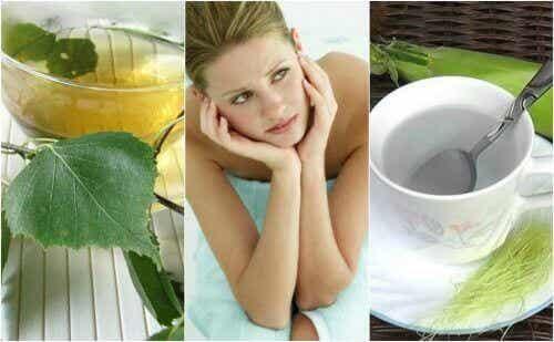 5 infusions naturelles contre la cystite
