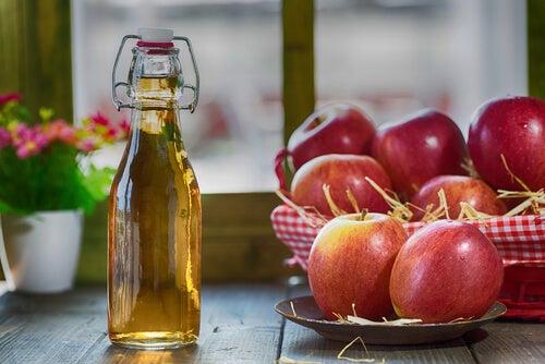 Le vinaigre de cidre de pomme repousse les insectes