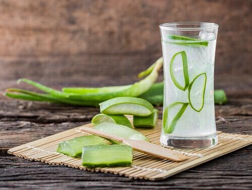 le jus d'aloe vera pour calmer les ulcères