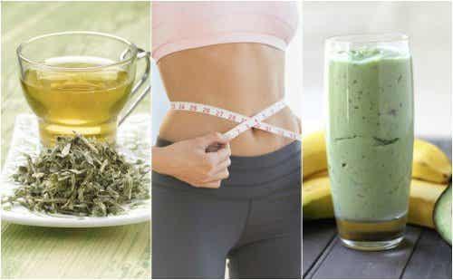 3 boissons au thé vert pour perdre du poids