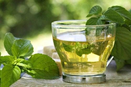 Infusion au thé vert.