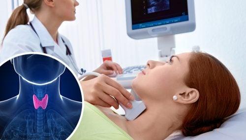 Physiologie de la thyroïde