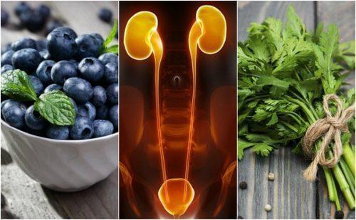 7 aliments à ingérer pour protéger les reins et la vessie