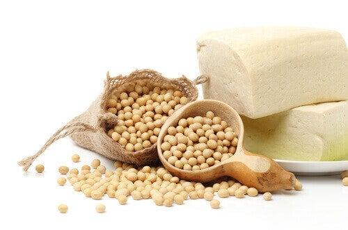 les protéines de soja