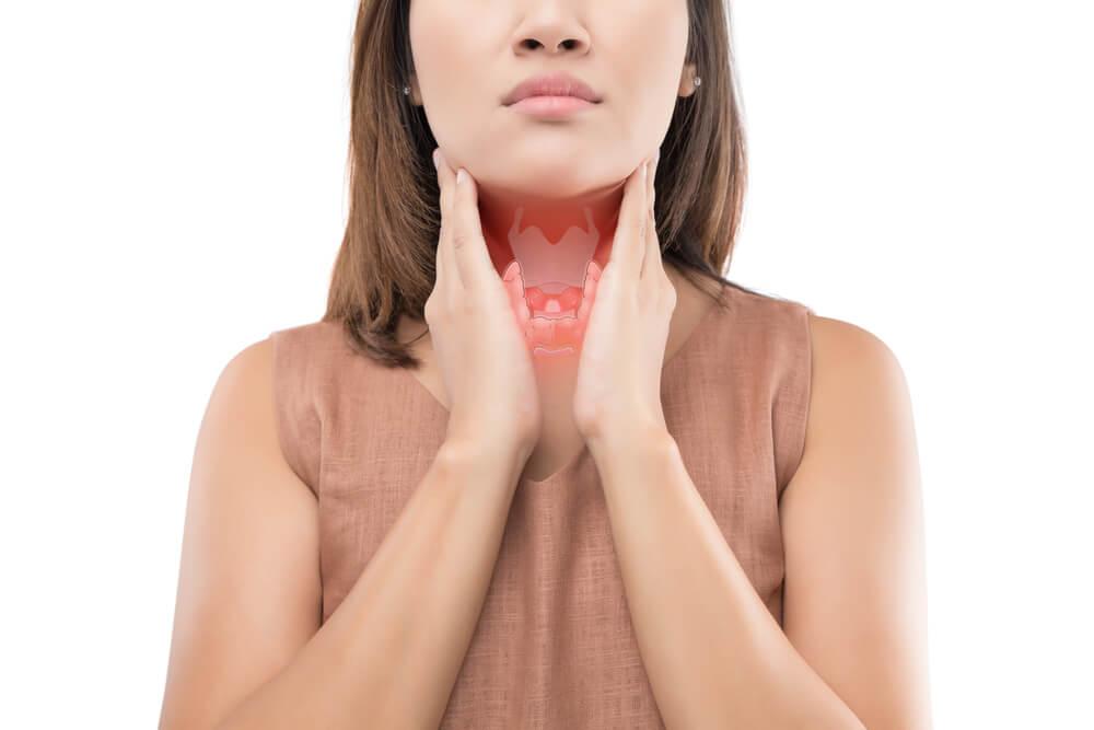 La thyroïde et les hormones