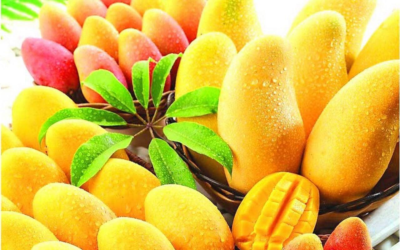 un plat de mangues