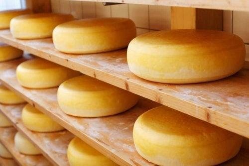 Les types de fromages les plus sains : Cheddar vieux