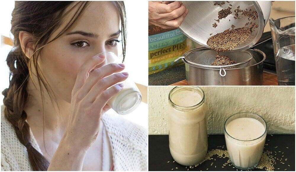 Le lait d'alpiste : comment le préparer et quels sont ses bienfaits ?