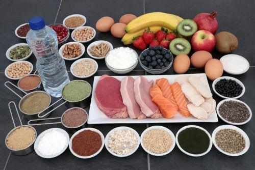 Aliments riches en créatine