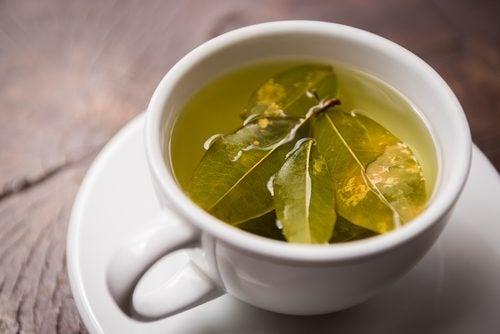 infusion de feuilles de coca