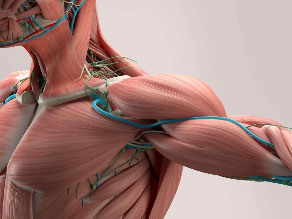 7 solutions maison pour réduire les spasmes musculaires