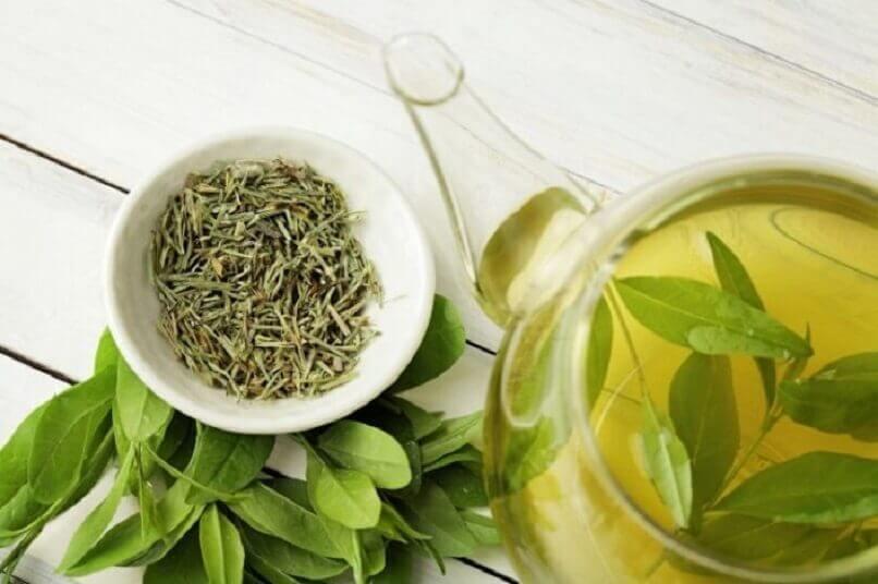 thé vert et carafe d'infusion