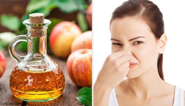 5 déodorants naturels pour combattre les mauvaises odeurs corporelles