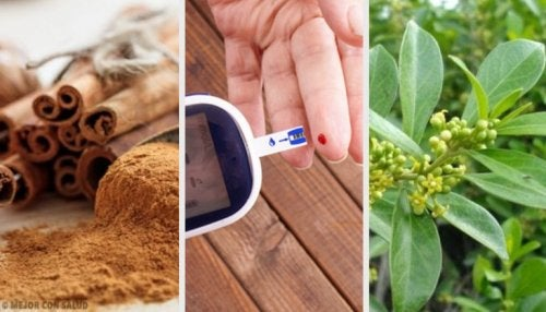 5 plantes médicinales qui aident à contrôler le diabète